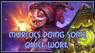 Hearthstone: Murlocs doing some quick work (murloc paladin)