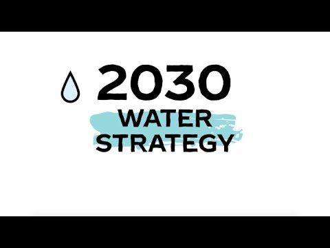 The Coca-Cola Company's 2030 Water Security Strategy