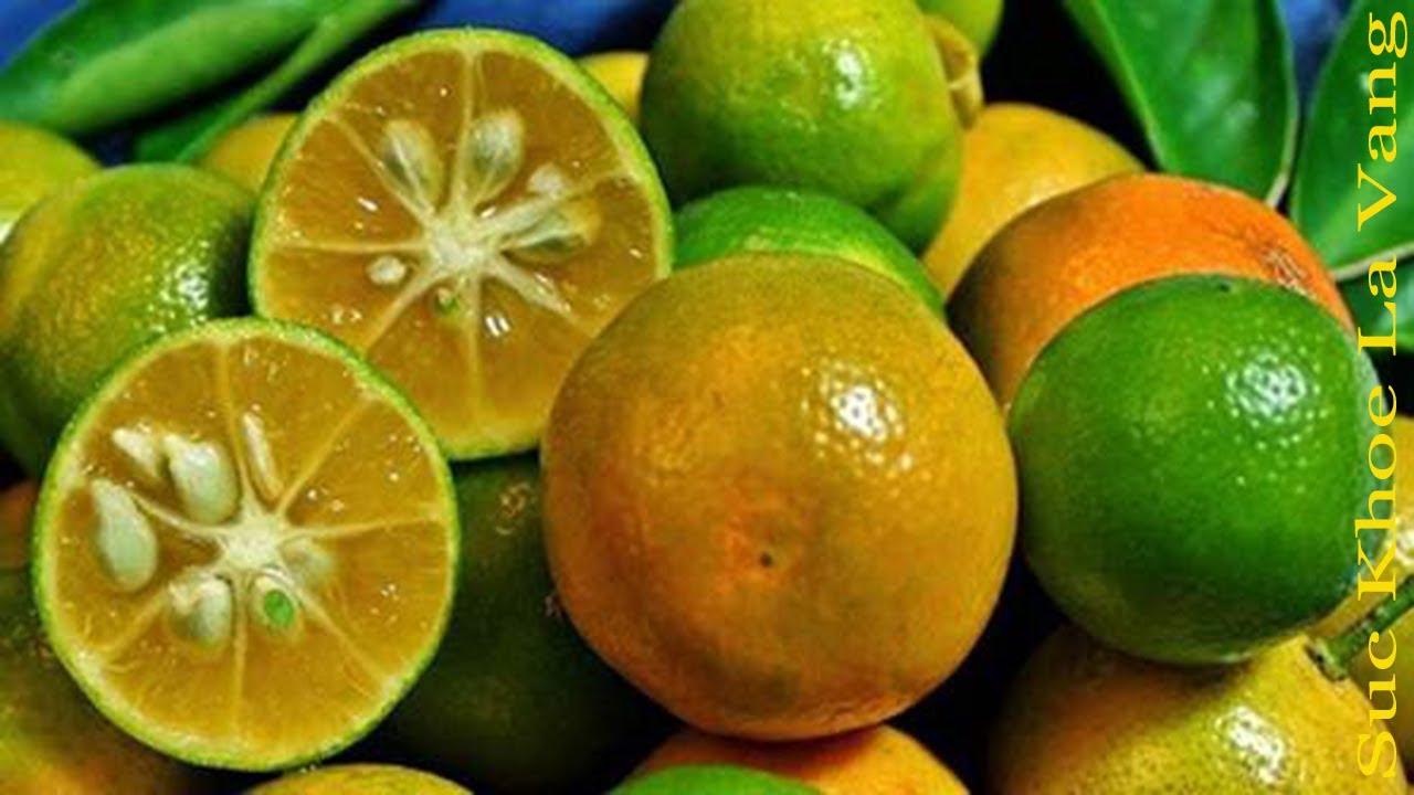 Tác dụng của trái tắc (quất) đối với sức khỏe trong cuộc sống hàng ngày