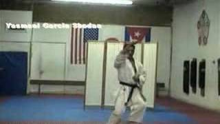 PINAN SHODAN Jyoshinmon Shorin Ryu Karate Do