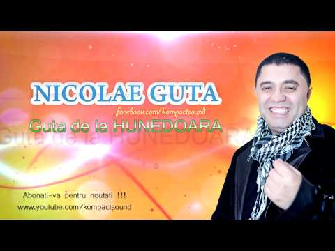 Nicolae Guta - Guta de la Hunedoara (HIT Best Of Nicolae Guta)