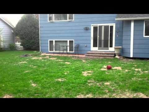 "Maple Crest Landscape ""Before & After"" Landscaping Projects (Part 1)"