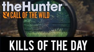 The Hunter Call of the Wild - 3 Kills in 5 Minutes