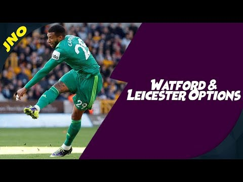 Fantasy Premier League - WATFORD & LEICESTER CITY OPTIONS - FPL Gameweek 10
