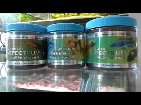 My Thoughts On NLS(New Life Spectrum) Fish Food