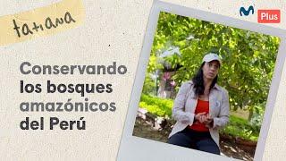 Equipo Arbio y su lucha por la conservación de los bosques peruanos | Un Perú Así
