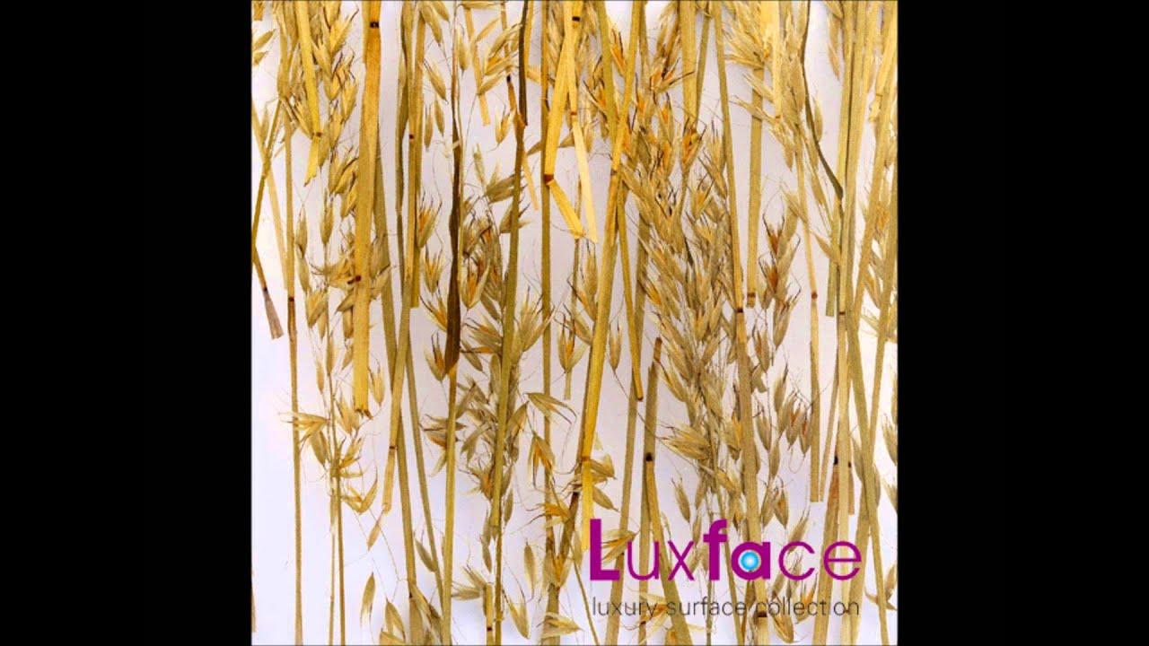 Translucent Acrylic Resin Panels Dubai Abu Dhabi - YouTube
