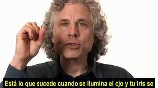 Steven Pinker sobre el Libre Albedrío (Subtitulado)