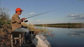 Приехал на вечерку половить рыбу на фидер Замешал прикормку с КОКА КОЛОЙ