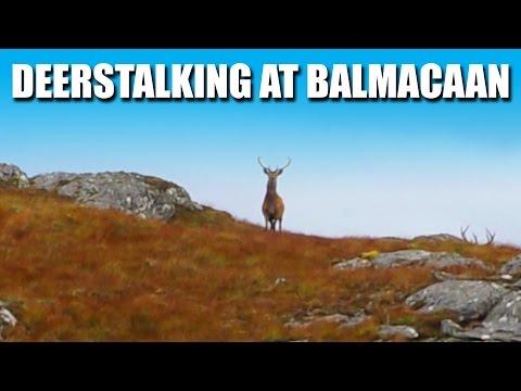 Deerstalking At Balmacaan Estate, Inverness-shire