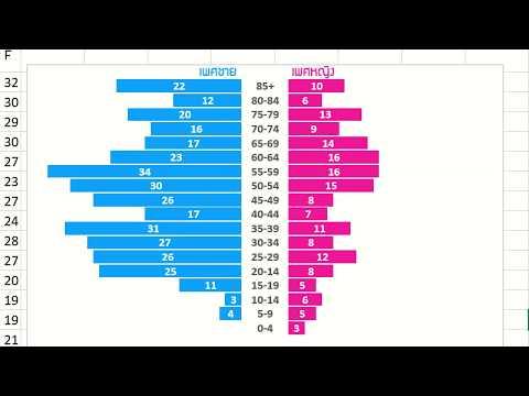 เทคนิค Excel นำเสนอข้อมูลช่วงอายุและเพศแบบ Population Pyramid