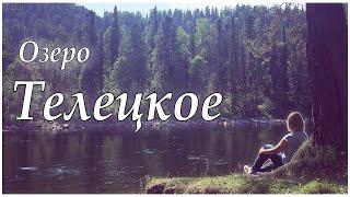 видео Отдых в Горном Алтае