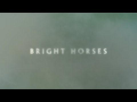 Nick Cave and The Bad Seeds - Bright Horses (Lyric Video)