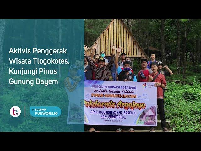 Aktivis Penggerak Wisata Tlogokotes, Kunjungi Pinus Gunung Bayem