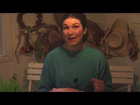 Bivaxdukar och Wasabi, Aloe vera och Växtbelysning Hemma hos Jessica i v 48