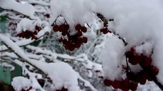 """Пришла""""Красотка-зима""""!!!"""