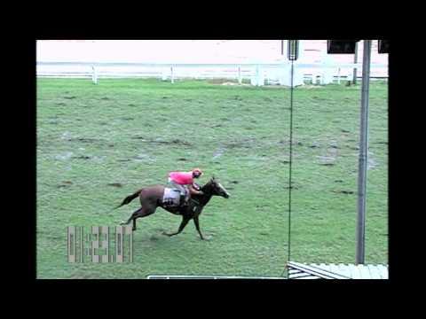 ม้าแข่งสนามไทย 24 มกราคม59 เที่ยว2 ช้น 8