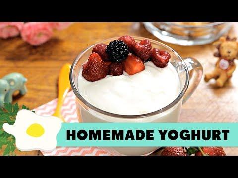 Resep Homemade Yoghurt
