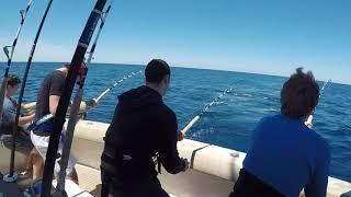 Bigeye Tuna Fishing