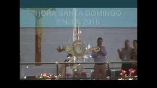 ENJES 2015 Guadalajara Hora Santa domingo