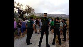 Desastre mediambiental: Xylella Fastidiosa. La Vall de Guadalest planta cara a la Unió Europea