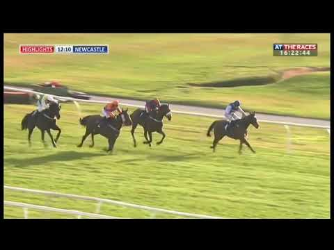 Incredible Horse Racing Win