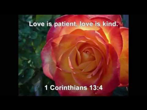 Bible Quotes on Love
