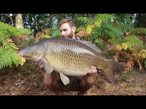 Carp Fishing France Etang Meunier 2016