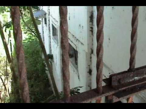 The Sufferras  - La Vida En El Penal (Automatic Riddim) Videos Luis