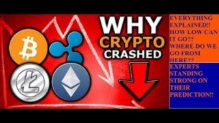Crypto Market Crash Explained!! || Where do we go from here? || by Crypto Phoenix