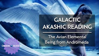 Galactic Akashic Reading | The Avian Elemental Being from Andromeda
