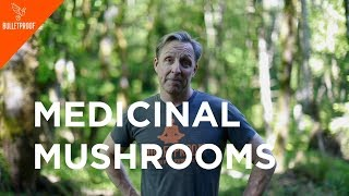 Father of Biohacking: Dave Asprey - Medicinal Mushrooms