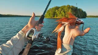 Fishing A Giant Beaver Lure for the Fish of 10,000 Casts (lakeside overnight)