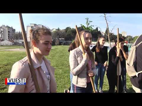 Vijesti TVN - Pulski gimnazijalci u dvorištu Rojca posadili šest stabala lipe 17.04.2019.