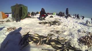 остров Сахалин рыбалка навага(, 2014-02-26T12:50:26.000Z)
