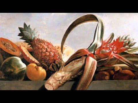 Albert Eckhout Paintings