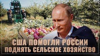США помогли России поднять сельское хозяйство и выйти в мировые лидеры