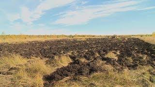 В этом году в Пензенской области введут в оборот 45 тыс. гектаров пустующих земель
