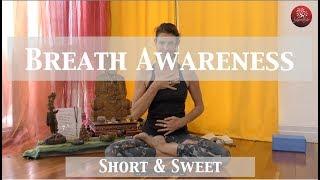 Short and Sweet - Breath Awareness
