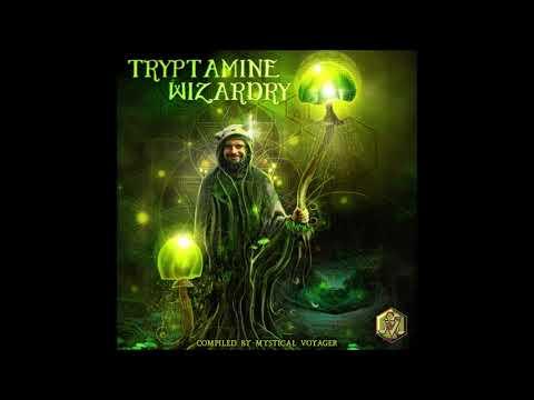 VA - Tryptamine Wizardry | Compilation