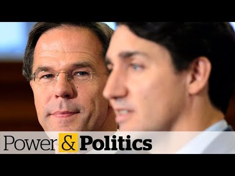 Trudeau and Rutte are the 'right sort' of populists, says Dutch PM