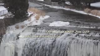 شيلة جبال الثلج I كلمات جزاء محمد المسردي I أداء فلاح المسردي