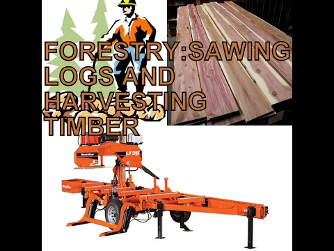 Using Griphoist to Move Logs   Doovi