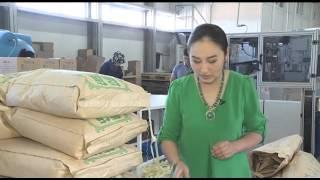 Terra industrial: как производят казахстанское мыло (29.04.16)(О том как производят казахстанское мыло, технологии и способы изготовления, отличия от зарубежных аналогов..., 2016-05-03T10:01:20.000Z)