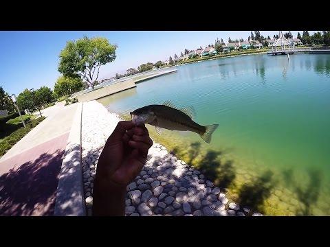 Irvine Fishing At North Lake
