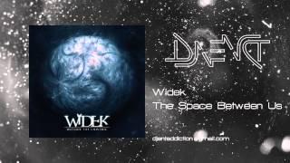 Widek - The Space Between Us