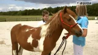 Mon poney ne veut pas donner les pieds