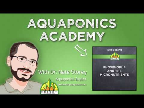 Aquaponics Academy #18: Phosphorus and Micronutrients