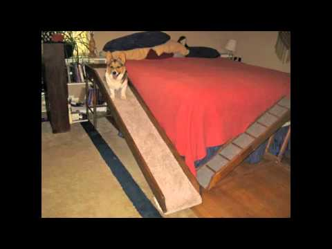 Dog Ramp For Loft Bed