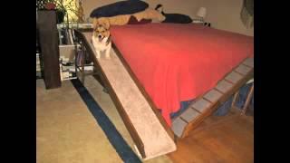 Custom Dog Bed Ramp.m4v
